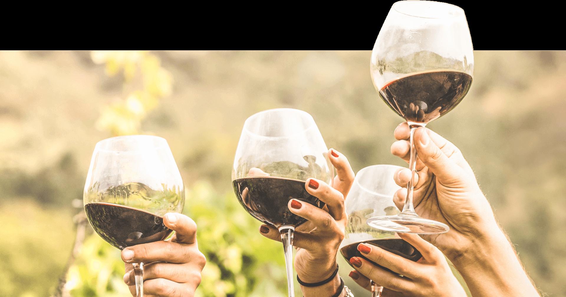 Prosit - Calici di vino